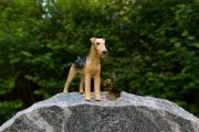 hunde-9420