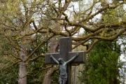 Nordfriedhof_April_2018#30-9392
