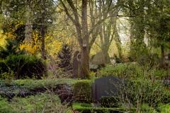 Nordfriedhof_April_2018#11-9298