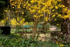 Nordfriedhof_April_2018#42-9424