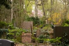 Nordfriedhof_April_2018#47-9433