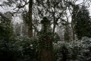nordfriedhof_feb#25-6663