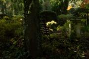 Wie_Nordfriedhof_Oktober3-1052