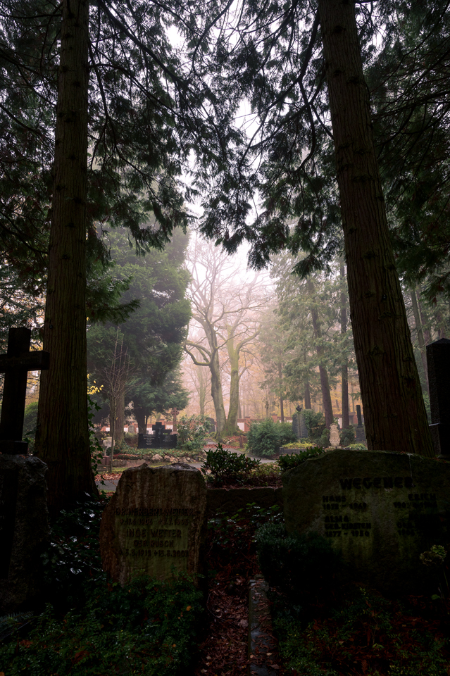 nordfriedhof_portrait32