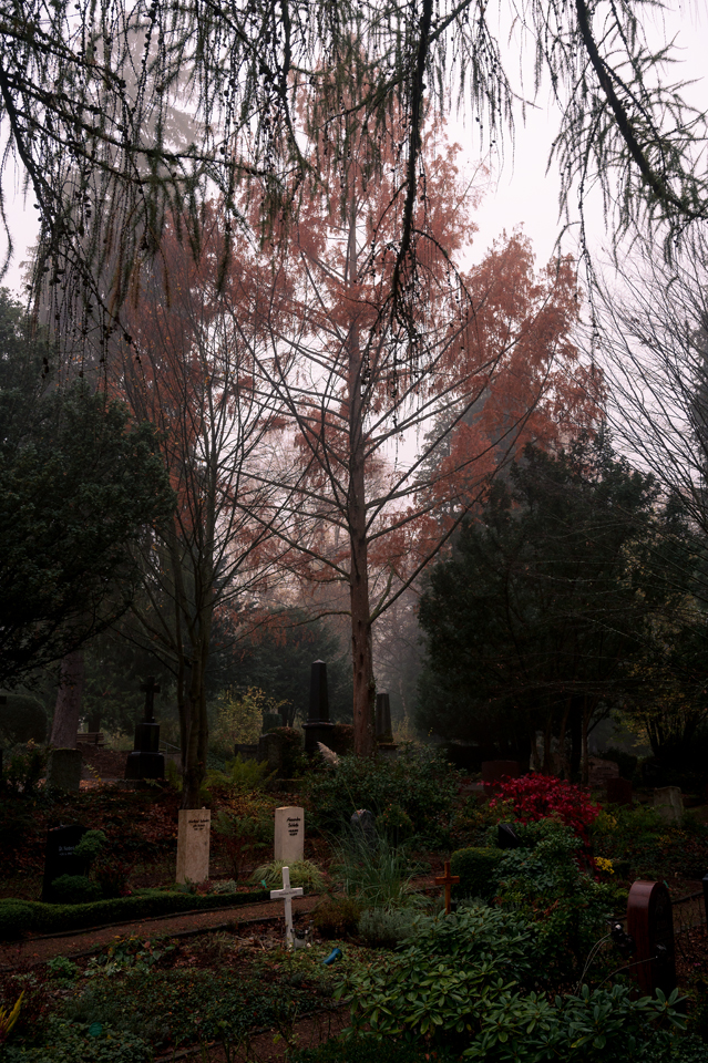 nordfriedhof_portrait6