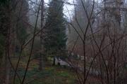 nordfriedhof_Weihnachten_2018#4-1458