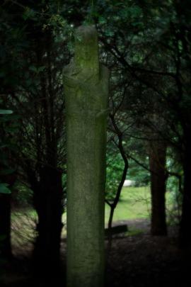 ohlsdorf_41-8809