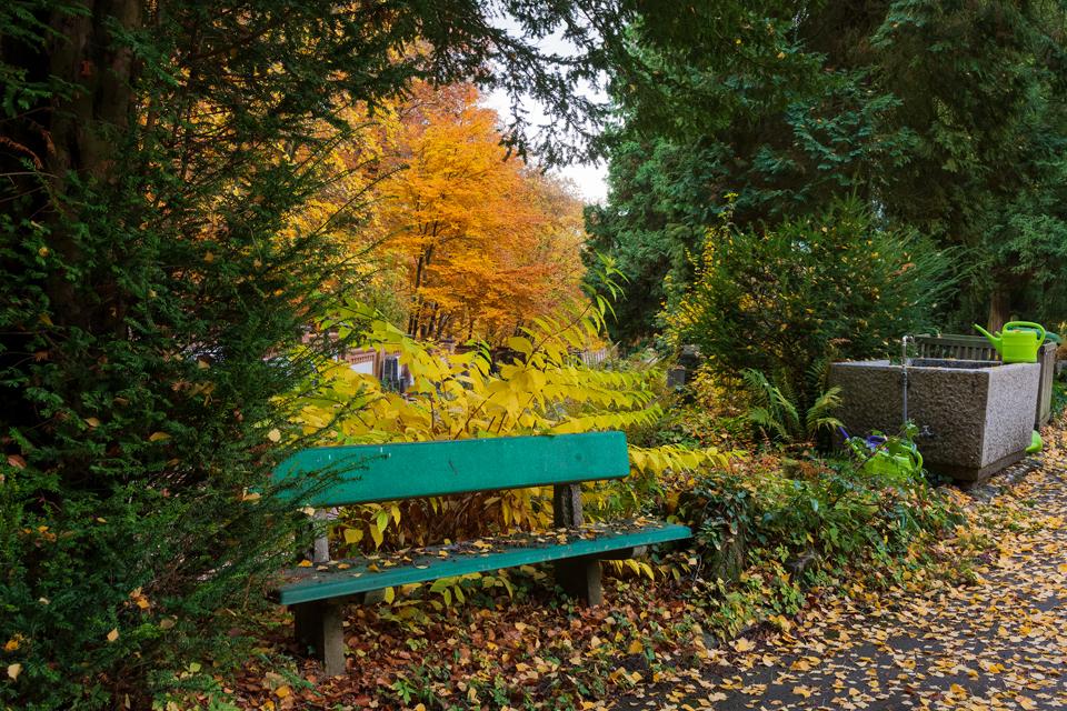 Wiesbaden_Nordfriedhof_201811#13-0460