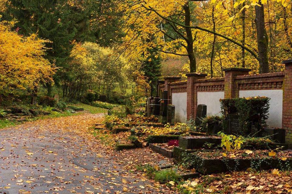Wiesbaden_Nordfriedhof_201811#17-0484