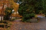 Wiesbaden_Nordfriedhof_201811#18-0488
