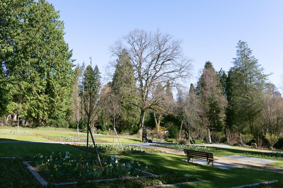 Nordfriedhof_2020033-2999