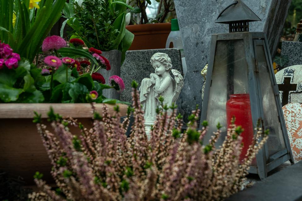 nordfriedhof_april15