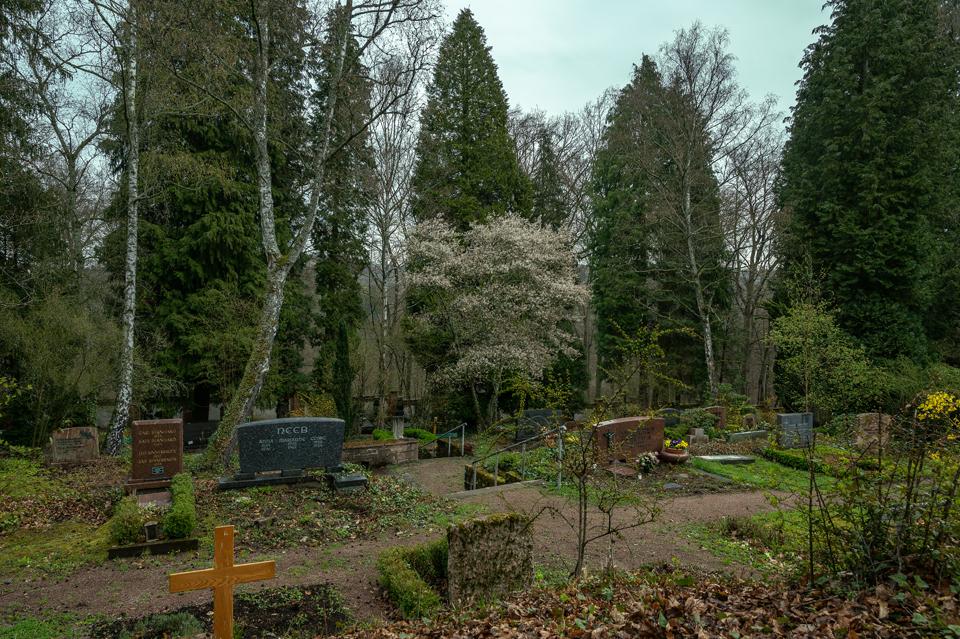 nordfriedhof_april16