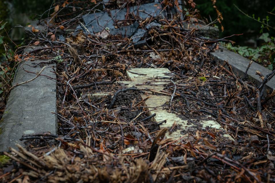 nordfriedhof_april22