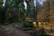 nordfriedhof_Februar_2019#14-2611