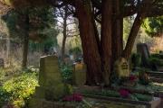 nordfriedhof_Februar_2019#16-2618