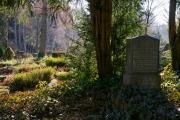 nordfriedhof_Februar_2019#17-2626