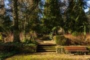 nordfriedhof_Februar_2019#8-2564