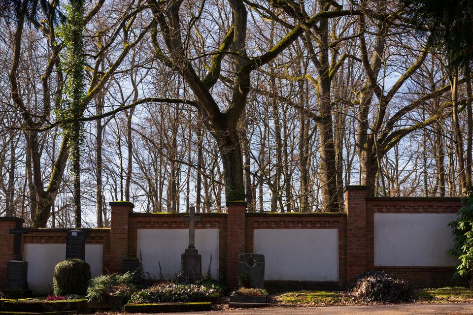 nordfriedhof_Februar_2019#19-2633
