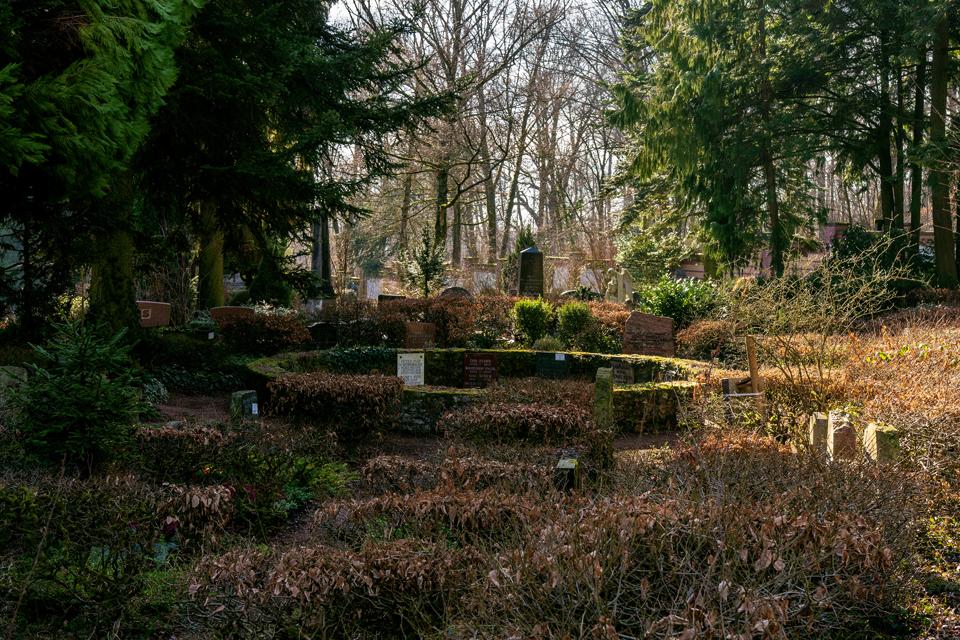 nordfriedhof_Februar_2019#20-2645