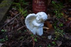 nordfriedhof_Februar_2019#15-2616