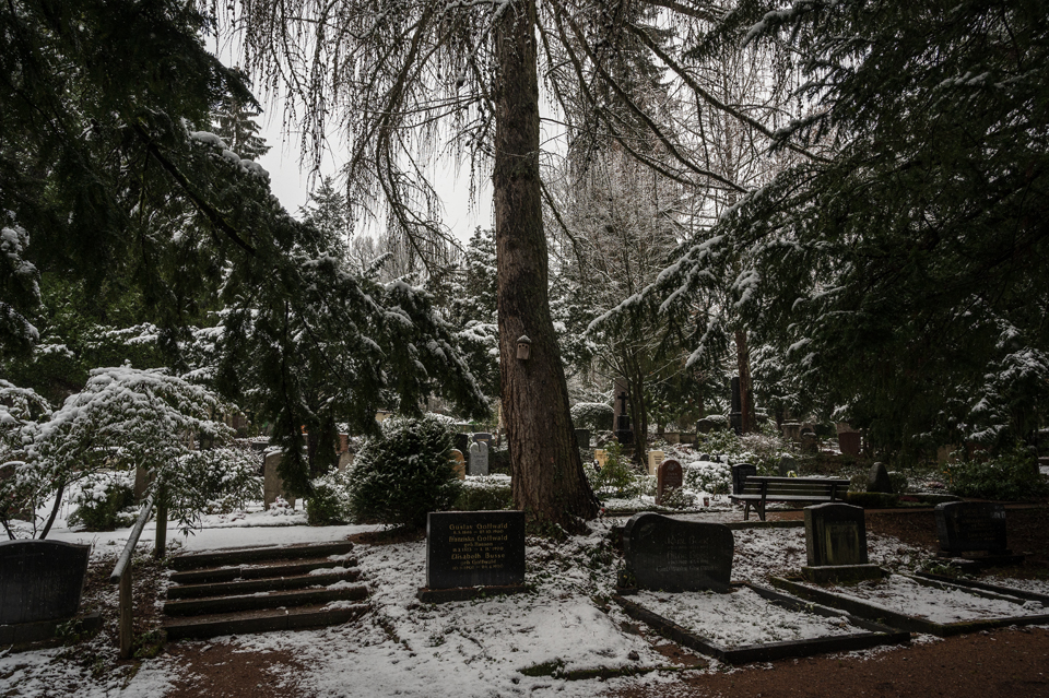 Nordfriedhof_Januar216