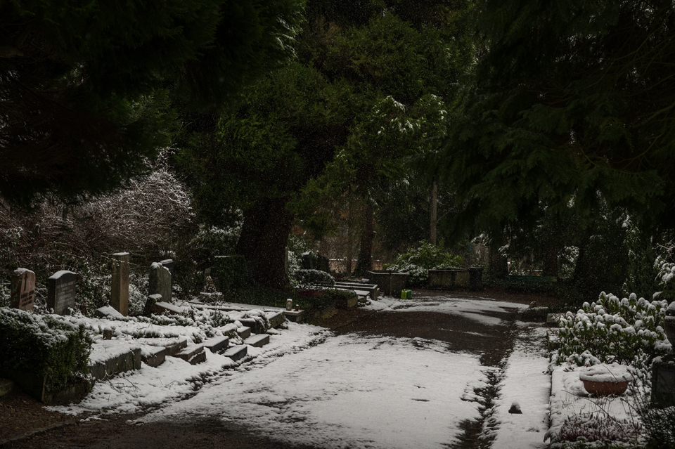 Nordfriedhof_Januar219