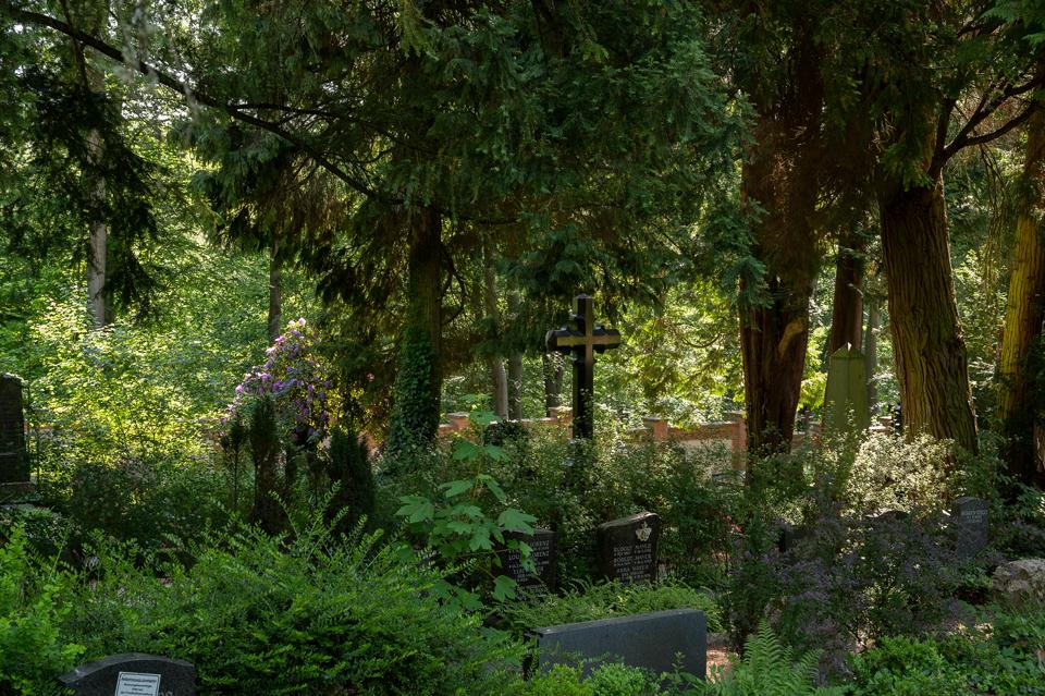 Nordfriedhof_0512-8567