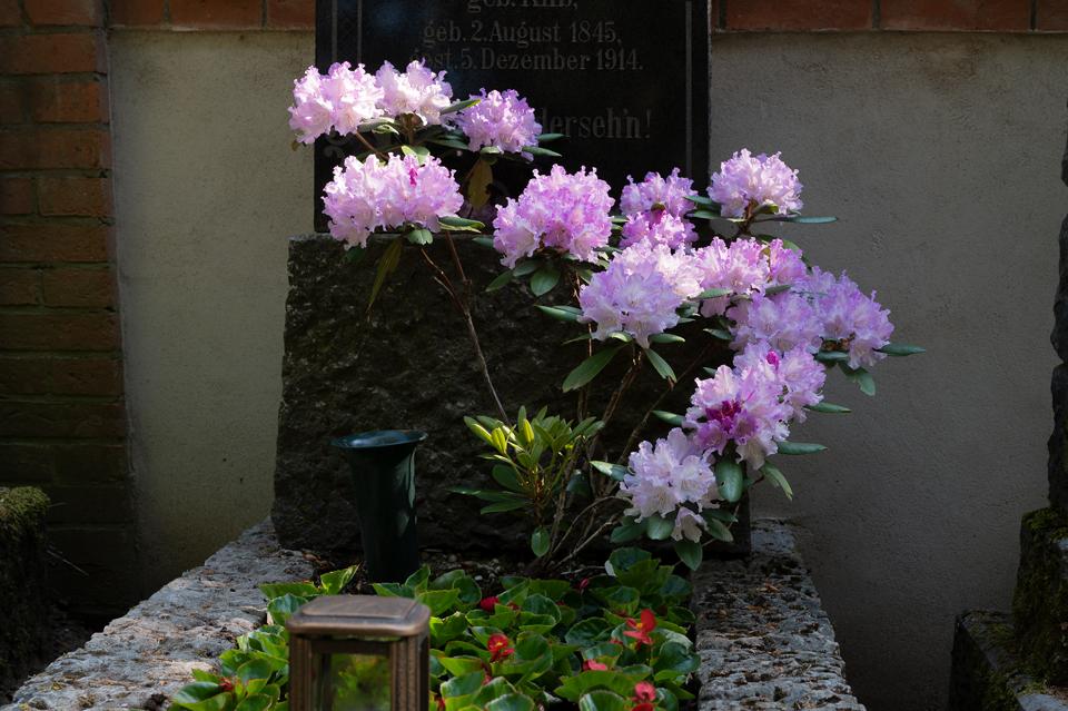 Nordfriedhof_0518-8633