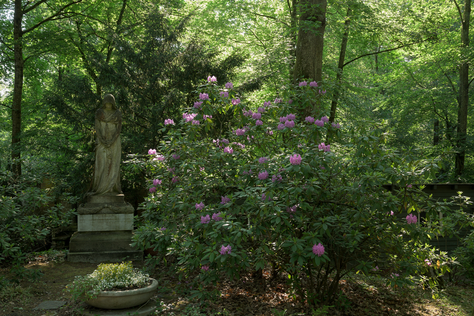 Nordfriedhof_053-8472