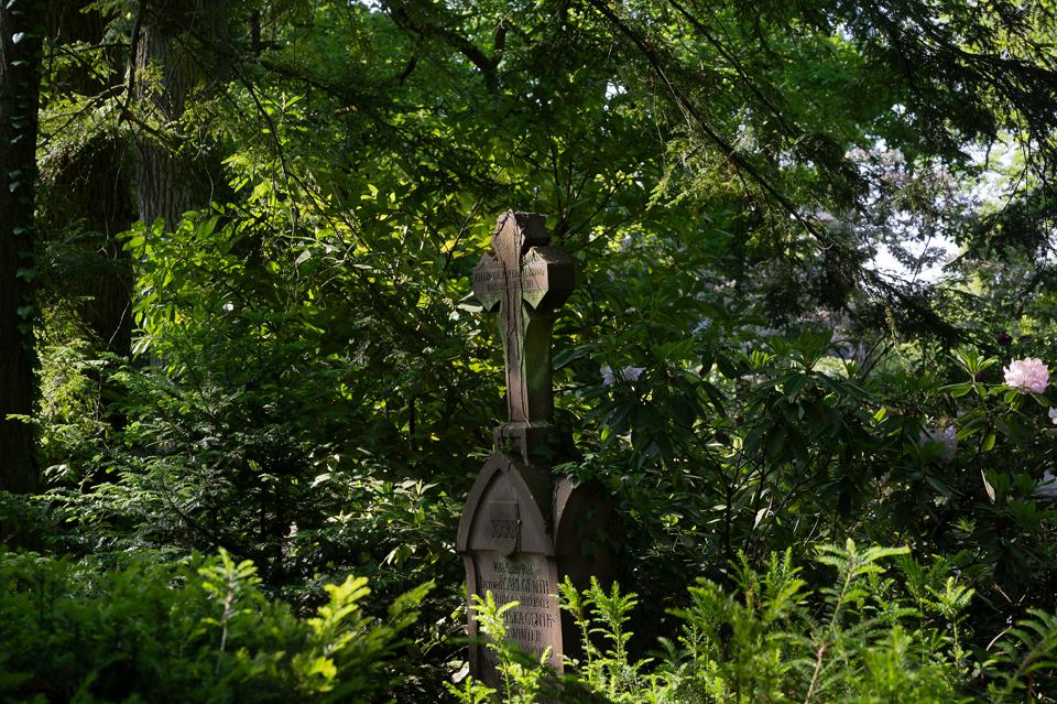 Nordfriedhof_056-8495