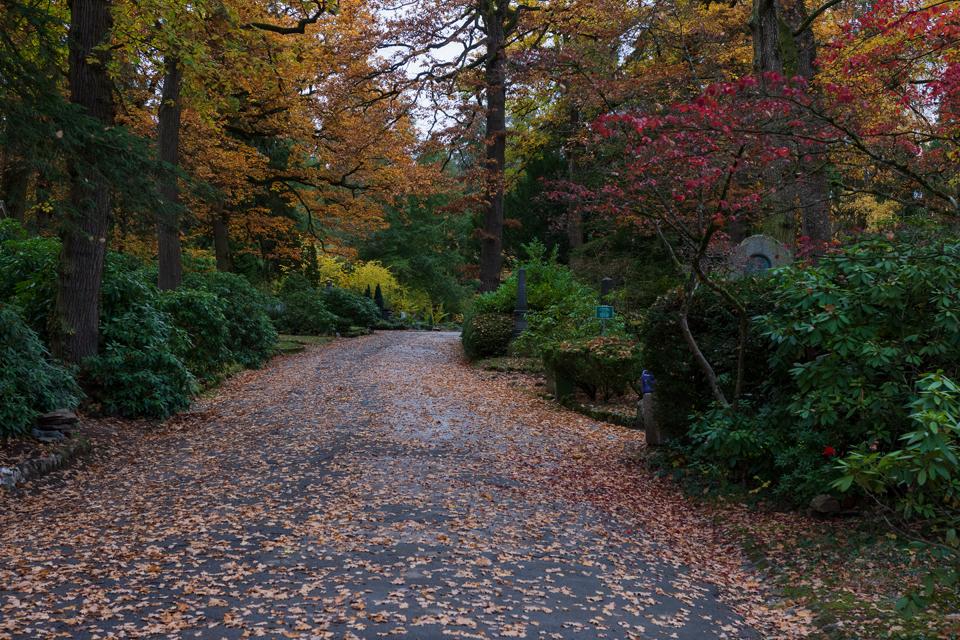Wiesbaden_Nordfriedhof_201811#1-0378