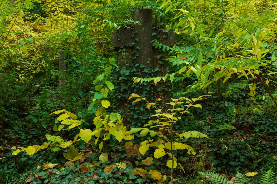 Wiesbaden_Nordfriedhof_201811#16-0483