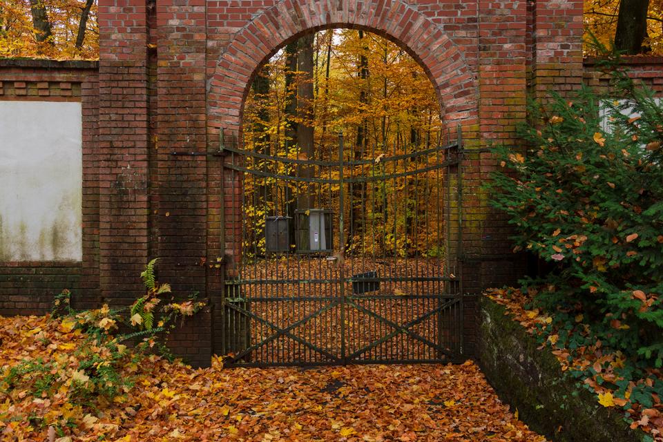 Wiesbaden_Nordfriedhof_201811#4-0399