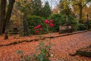 Wiesbaden_Nordfriedhof_201811#24-0527