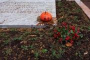 Wiesbaden_Nordfriedhof_201811#42-0847
