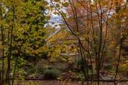 Wiesbaden_Nordfriedhof_201811#27-0551