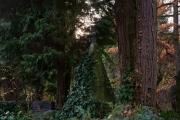 Wiesbaden_Nordfriedhof_201811#40-0836