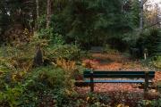 Wiesbaden_Nordfriedhof_201811#53-0904