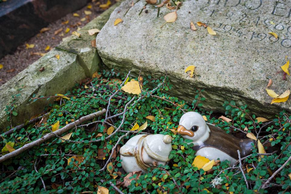 Wie_Nordfriedhof_Oktober15-1128