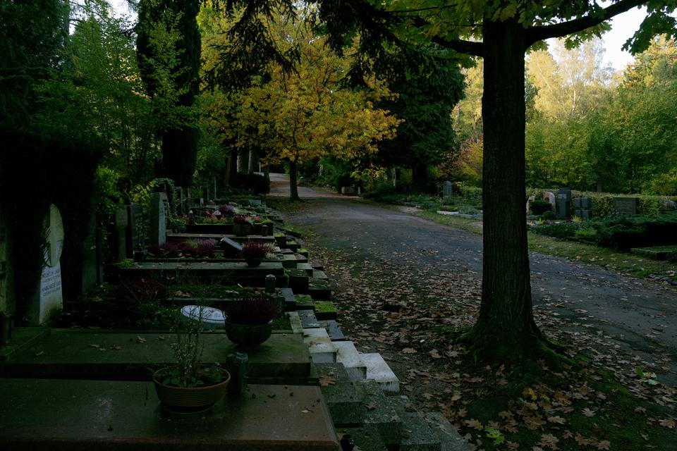 Wie_Nordfriedhof_Oktober18-1144