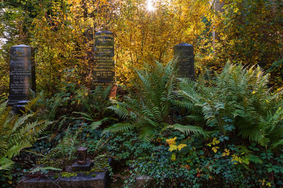 Wie_Nordfriedhof_Oktober4-1065