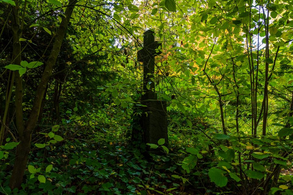 Wie_Nordfriedhof_Oktober7-1080