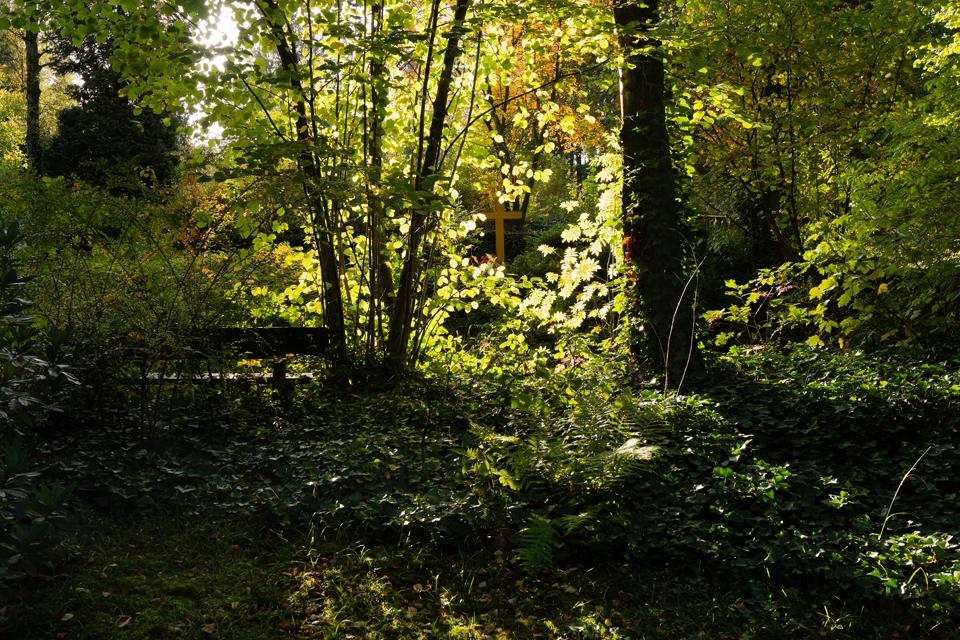 Wie_Nordfriedhof_Oktober9-1085