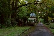 Wie_Nordfriedhof_Oktober13-1113