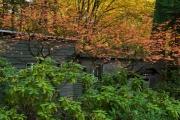 Wie_Nordfriedhof_Oktober20-1160