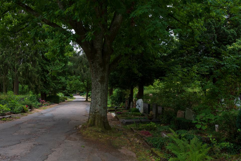 Nordfriedhof_September_2018#18-5163