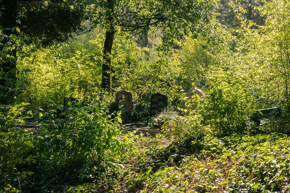 Wie_Nordfriedhof_20200915-1862