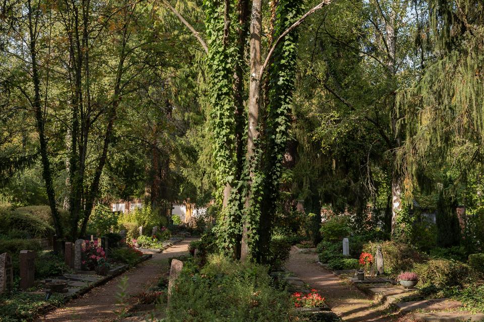 Wie_Nordfriedhof_2020099-1800