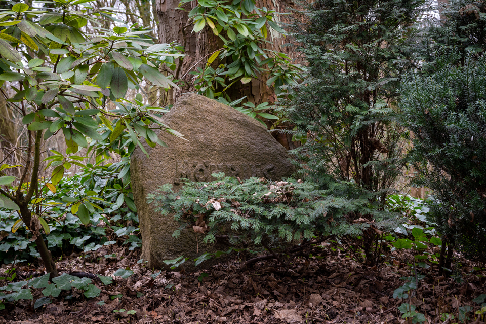 Ostfriedhof36